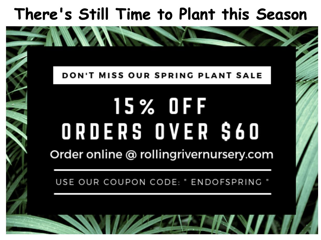 We're Hiring This Spring! 1 ScreenShot2019 05 24at9.14.24AM