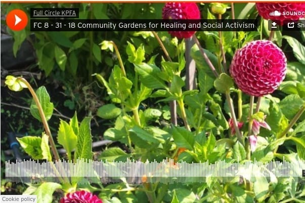 Press Community Gardens for Healing and Social Justice Interview 2