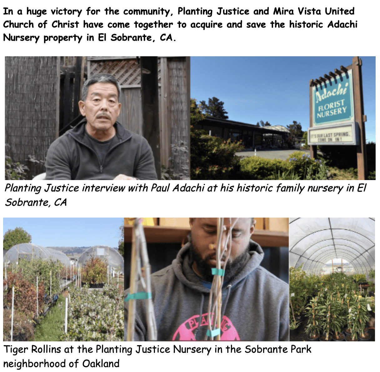 Important Announcement Advancing Food Justice @ Adachi! ScreenShot2019 05 03at11.00.37AM