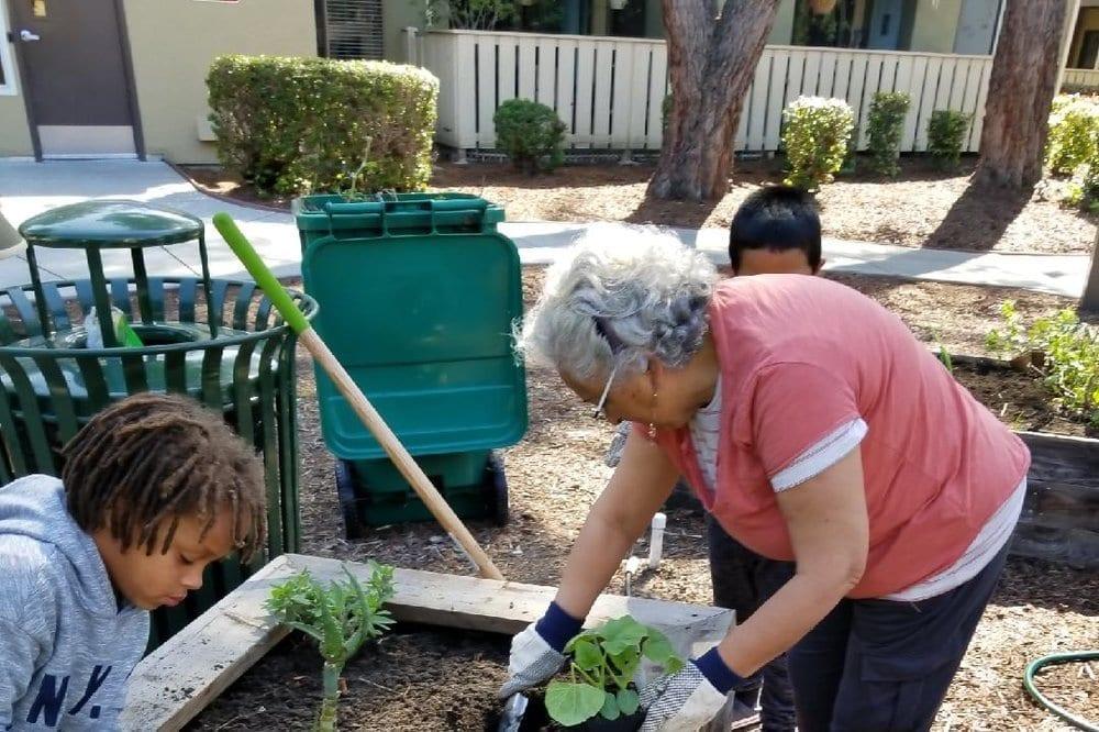 Community Justice Garden Hub aa1