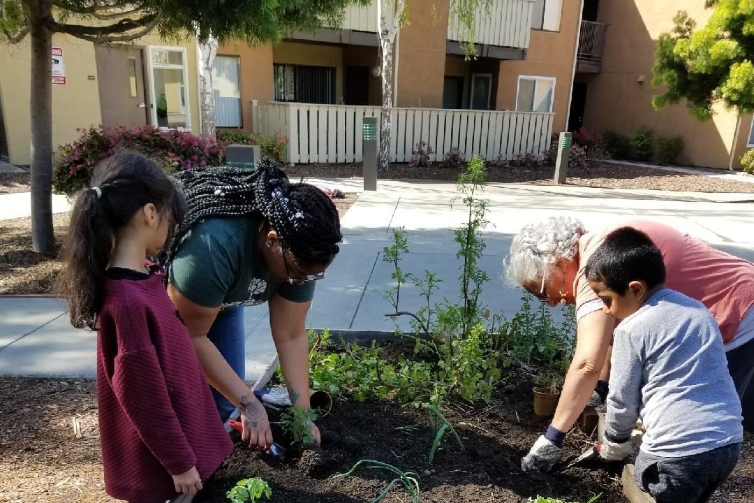 Community Justice Garden Hub aa3