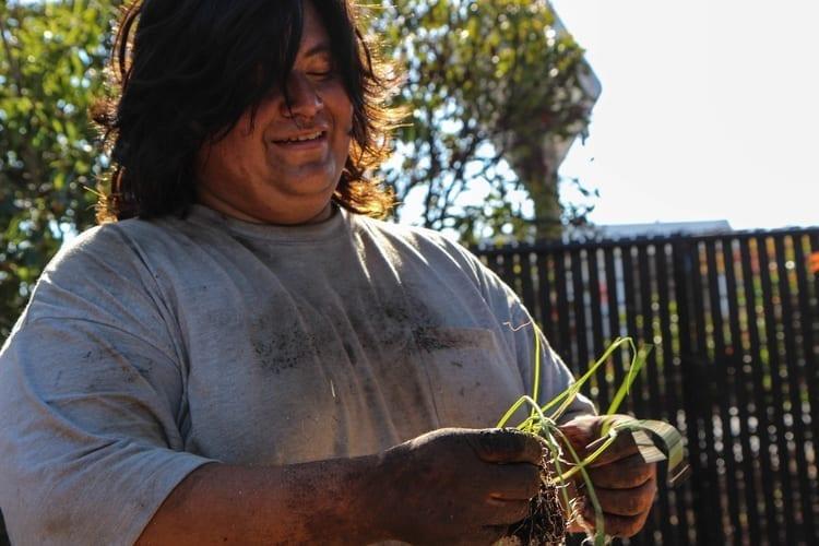 Community Justice Garden Hub cr2