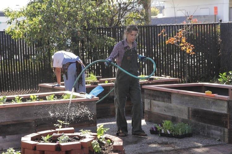 Community Justice Garden Hub cr7