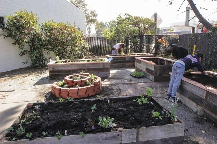 Community Justice Garden Hub cr8