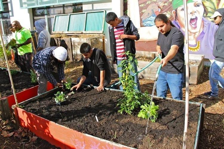 Food Justice Education fremont high