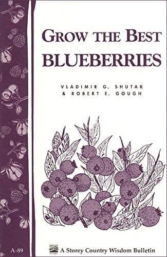 Gardening Library grow best blueberries