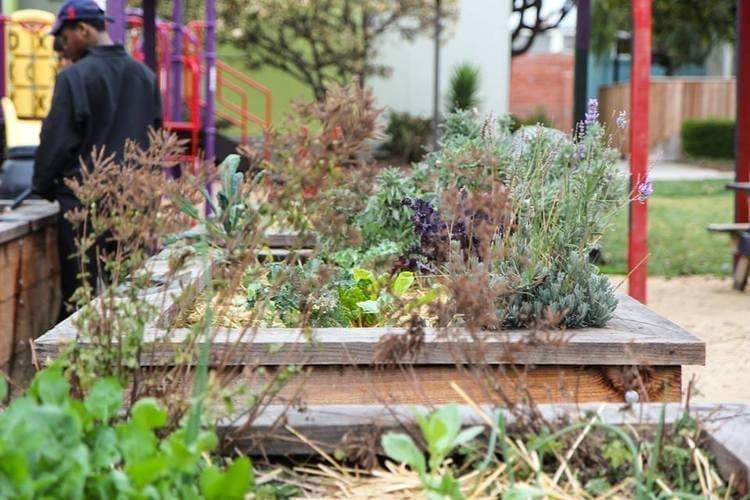 Community Justice Garden Hub kp7