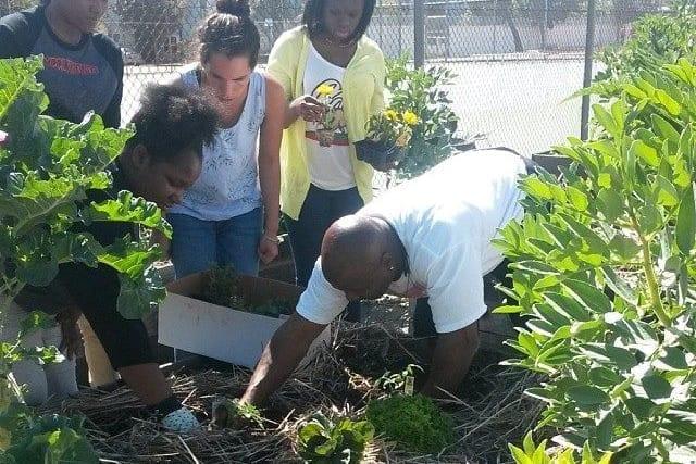 Food Justice Education mackpic
