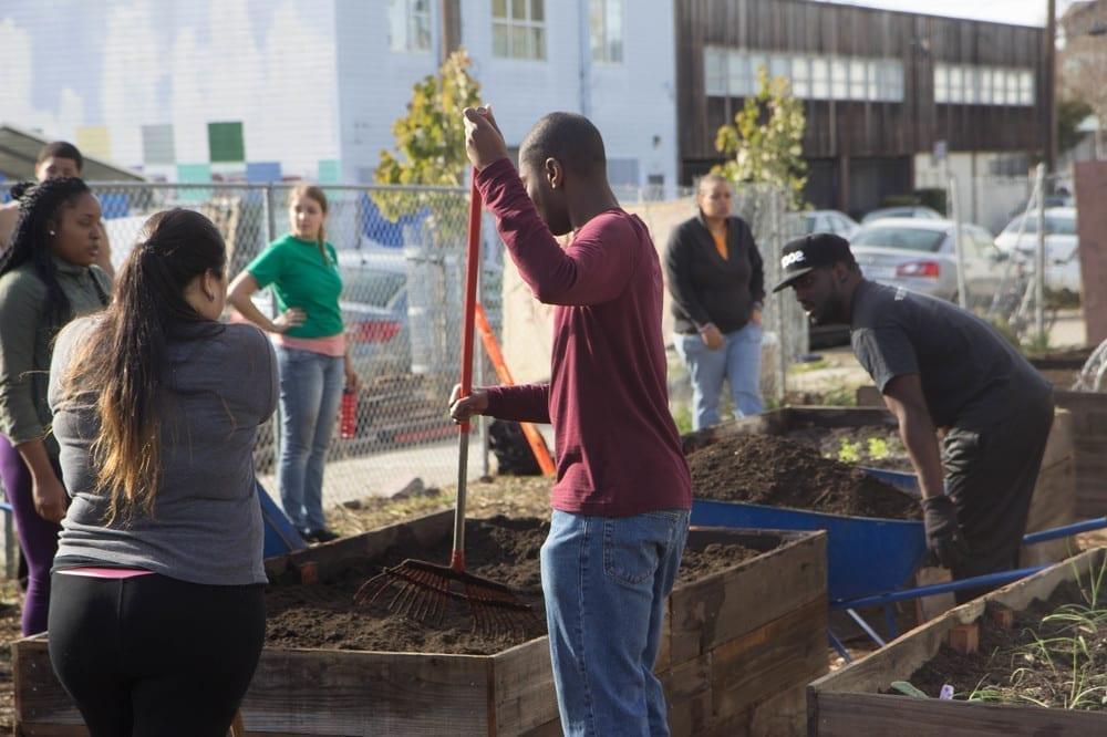 Community Justice Garden Hub qg2