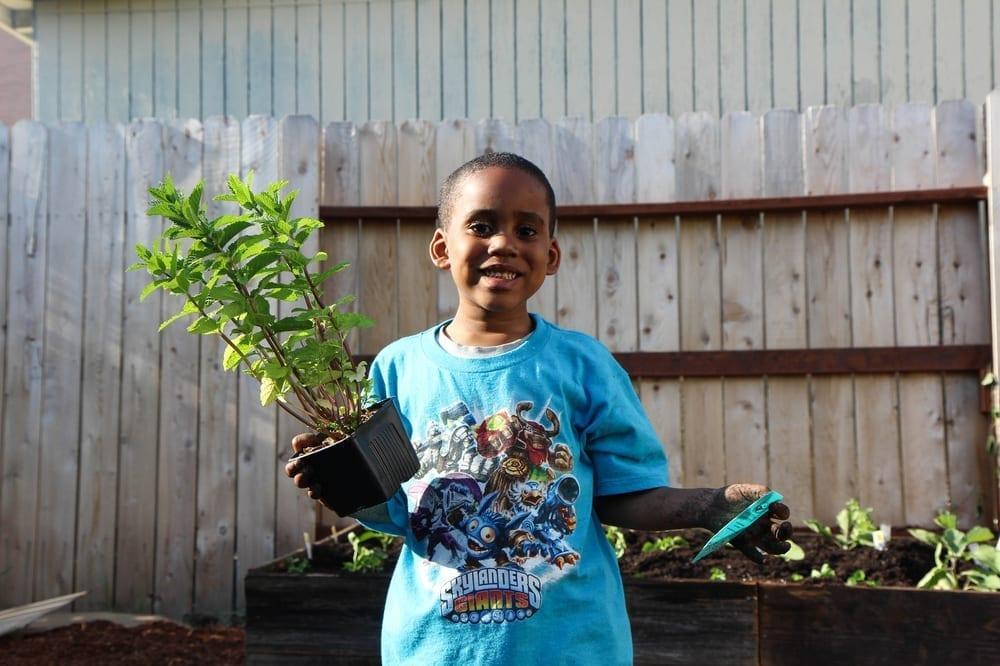 Community Justice Garden Hub rb2