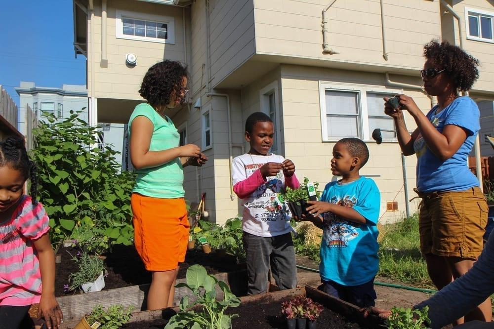 Community Justice Garden Hub rb4