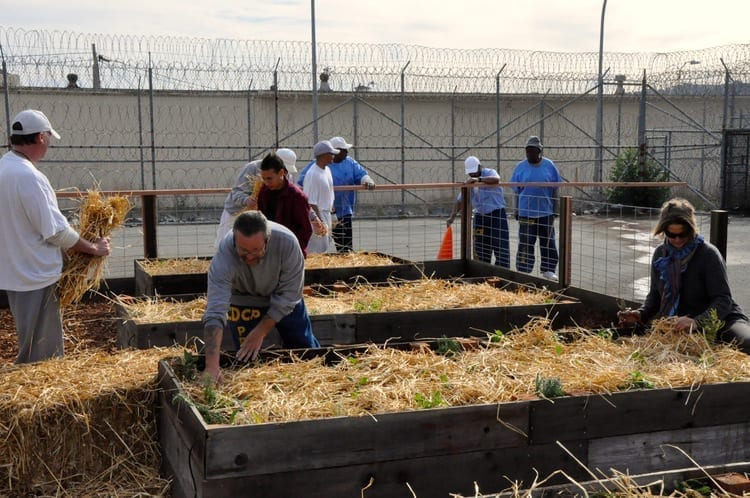 Food Justice Education san quentin