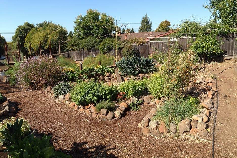 Programs transform your yard