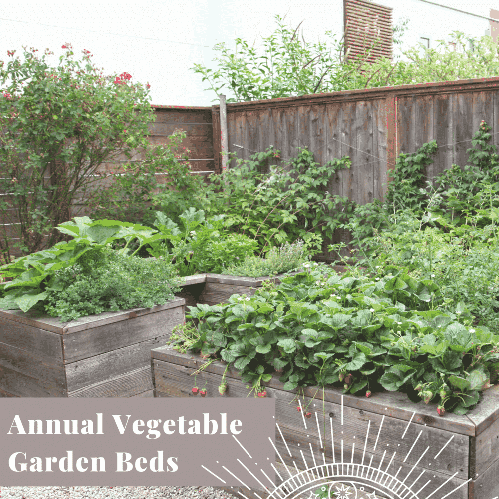 Transform Your Yard Annual Vegetable Garden Beds