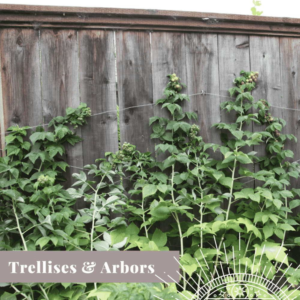 Transform Your Yard trellises and arbors
