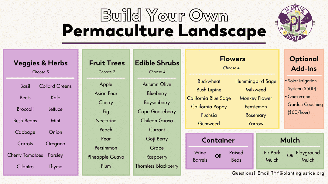 Transform Your Yard 2 Simplified Permaculture 2